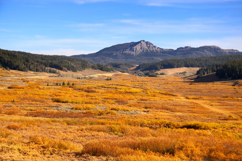 Outono em Wyoming foto de stock royalty free