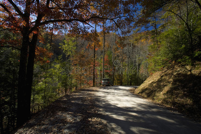 Outono, estrada de floresta nacional, TN imagens de stock
