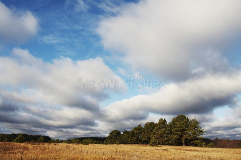 Outono landscapes_001 fotografia de stock