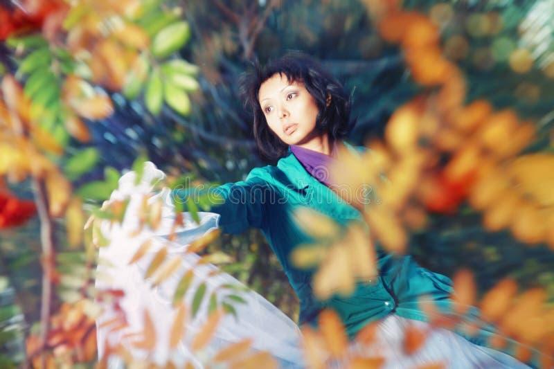 Outono místico fotografia de stock
