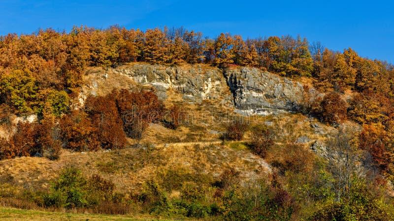 Outono na montanha fotografia de stock