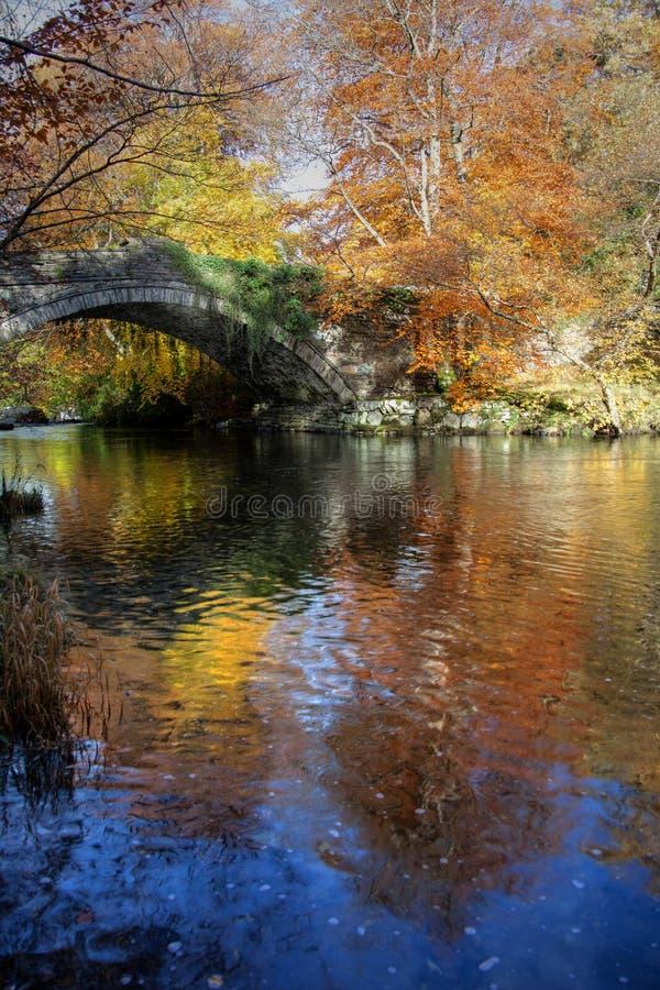 Download Outono no banco de Ogwen foto de stock. Imagem de bethesda - 16871474