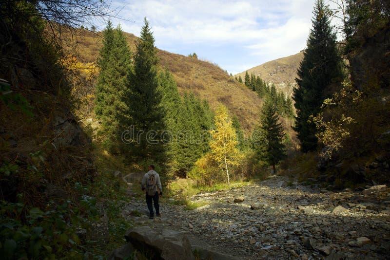 outono no desfiladeiro da montanha imagem de stock royalty free