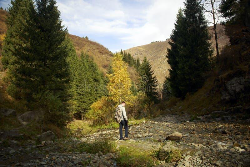outono no desfiladeiro da montanha foto de stock