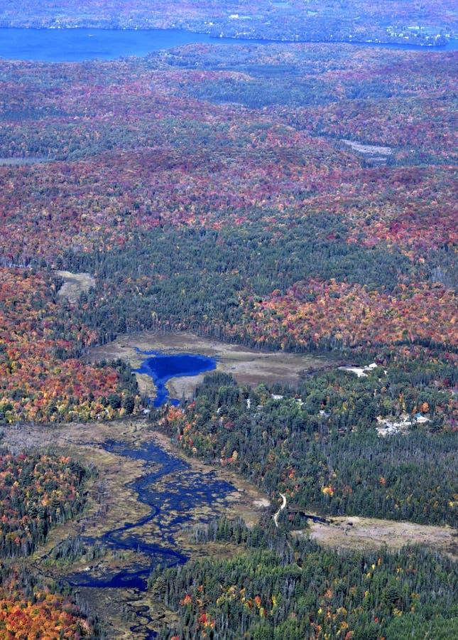 outono no muskoka imagem de stock royalty free