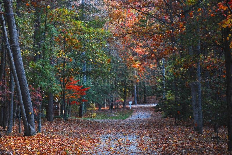 Outono no país imagem de stock