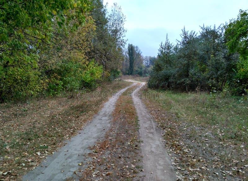 outono no país de Ucrânia imagens de stock royalty free