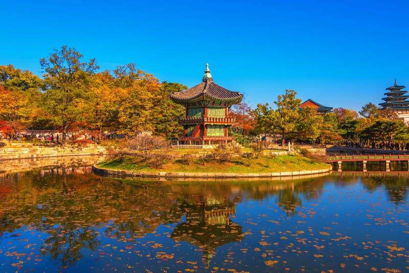 outono no palácio de Gyeongbokgung em seoul, Coreia imagem de stock royalty free