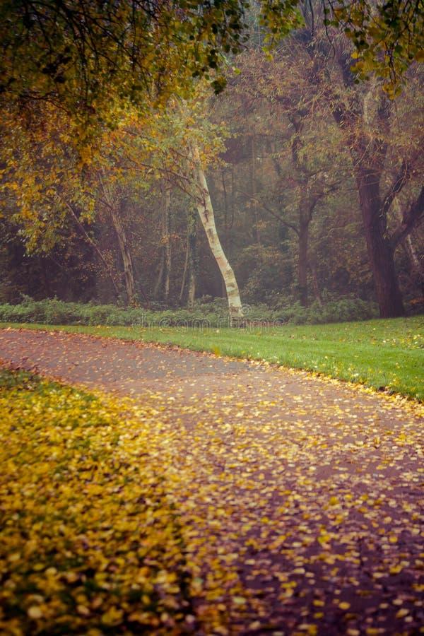 outono no parque de Goldsworth em Woking foto de stock