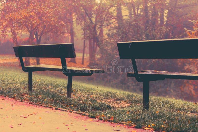 outono no parque de Goldsworth em Woking foto de stock royalty free