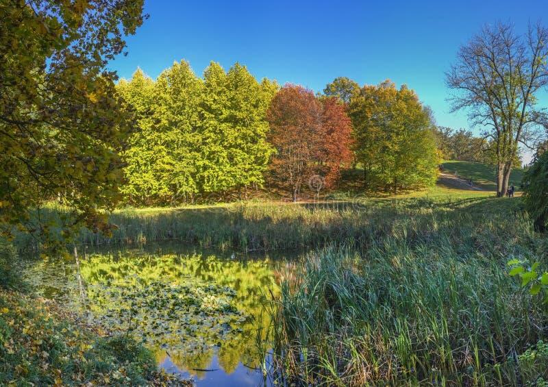 outono no parque de Sofiyivka em Uman, Ucrânia imagens de stock