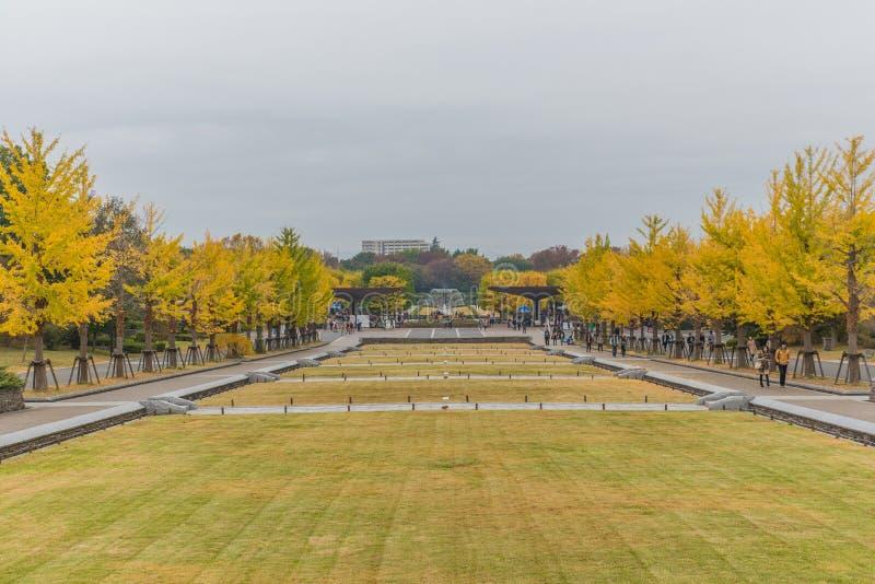 outono no parque memorável de Showa, Tachikawa, Japão imagens de stock