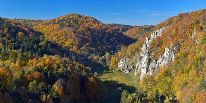 outono no parque nacional de Ojcow foto de stock royalty free