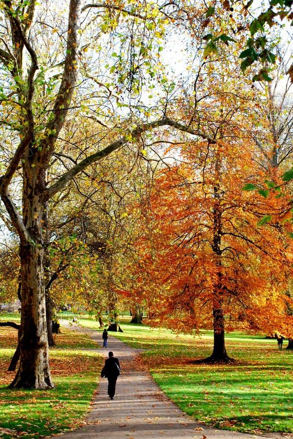 Outono no parque público de Londres imagens de stock royalty free