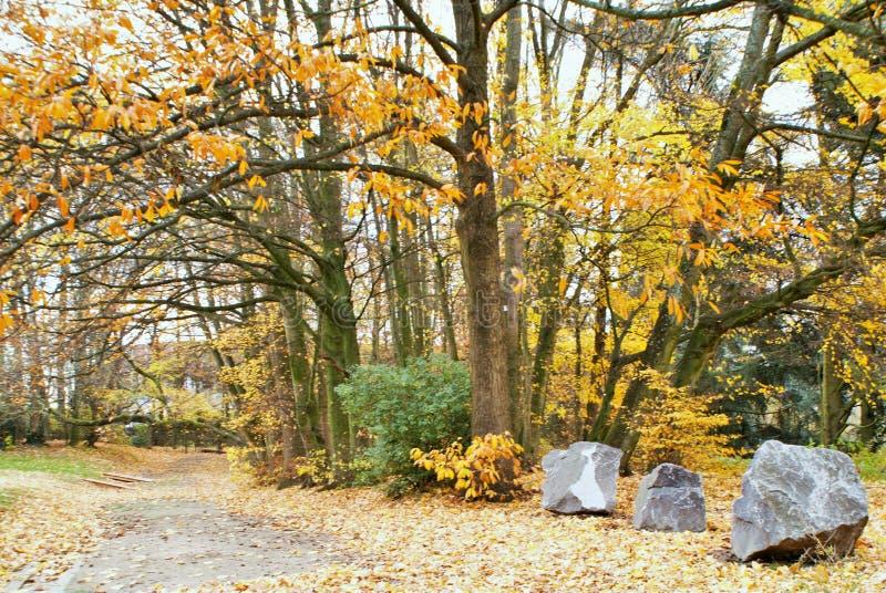 Outono no parque Parc Astrid imagens de stock