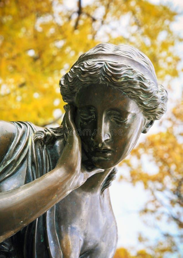 Outono no parque velho imagens de stock