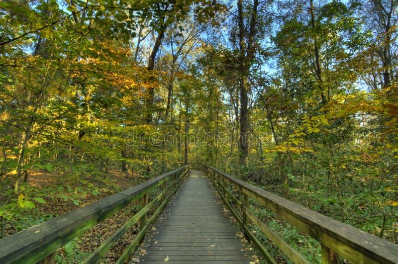 outono no passeio à beira mar fotos de stock