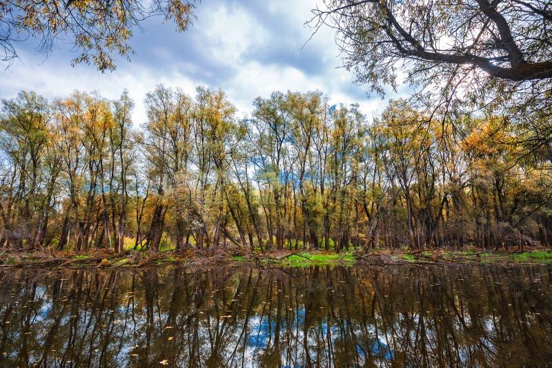 outono no rio Sibéria ocidental imagem de stock