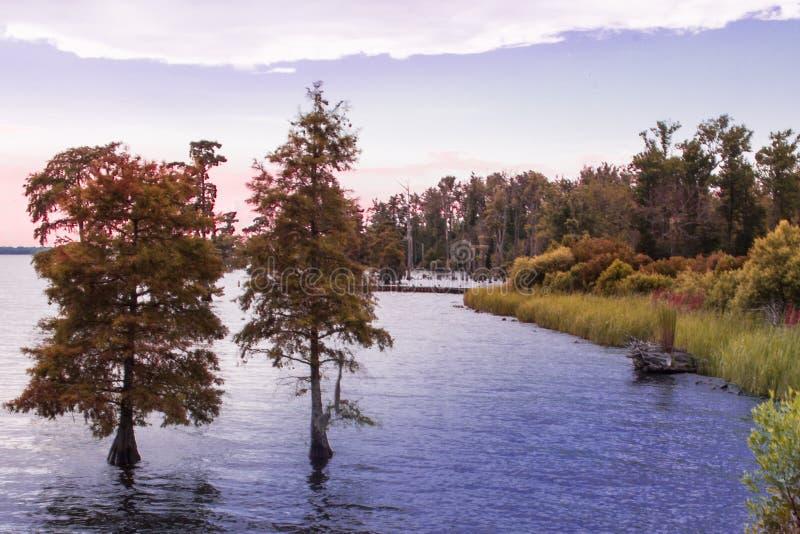 outono no Riverbank fotos de stock royalty free