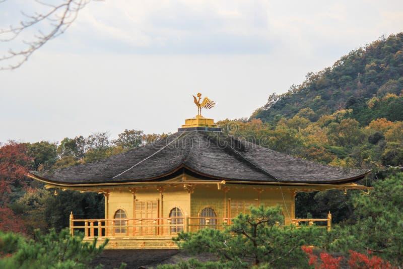 outono no templo de Kinkakuji (pavilhão dourado), Kyoto do norte, Japão fotos de stock royalty free