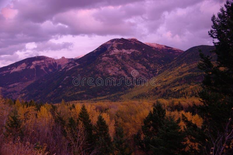 Outono no vale imagem de stock royalty free