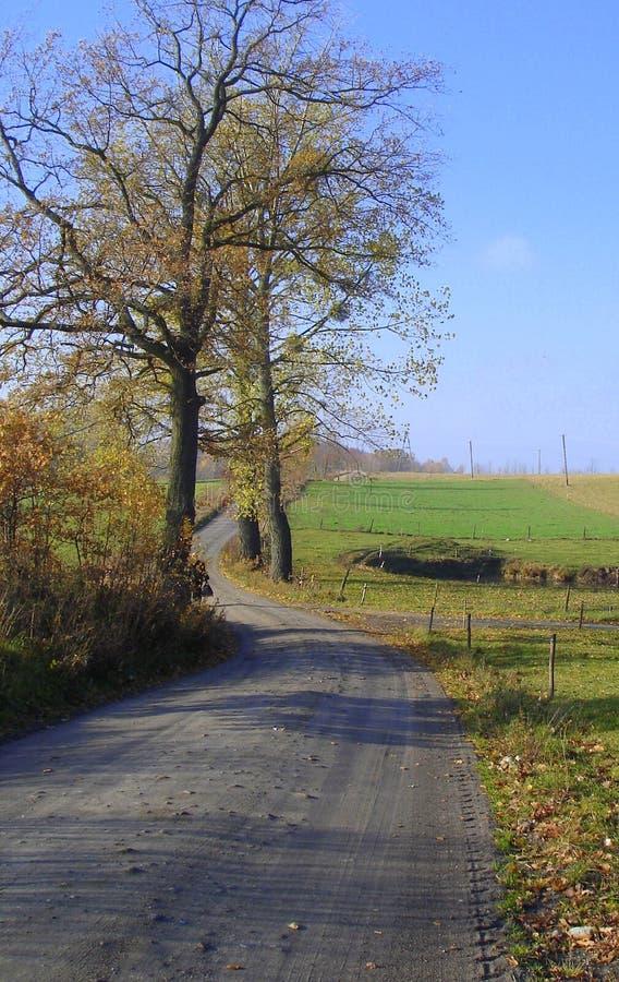 Outono polonês imagens de stock royalty free