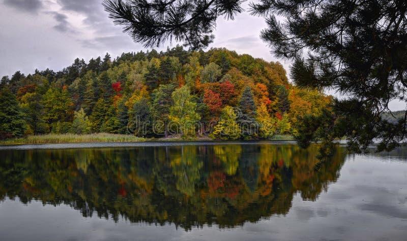 outono reflection1 fotografia de stock royalty free