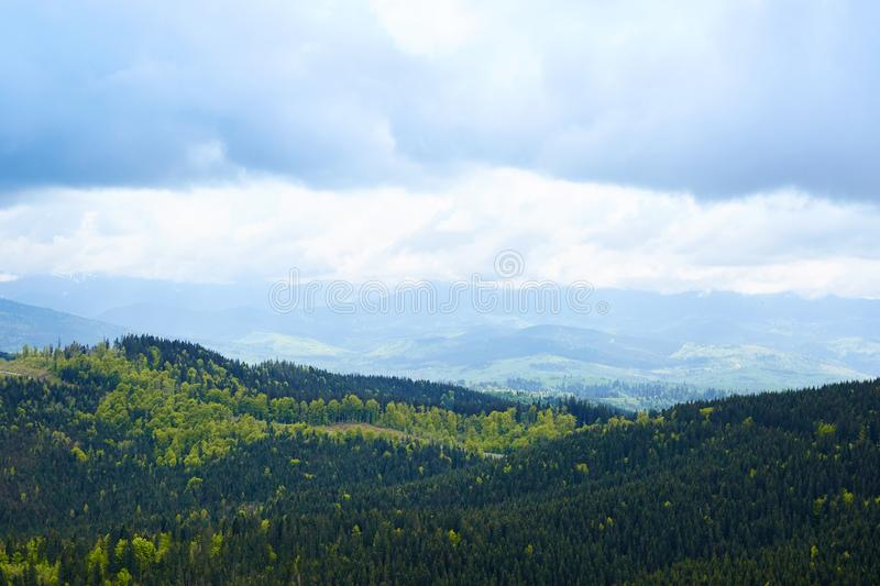 Outside landscape of splendid mountain view. There cloudy sky, hills are full of evergreen pine trees, cold cloudy weather, stock images