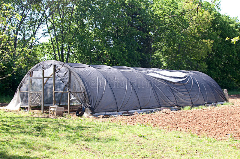 Download Outside View of Cold Frame stock photo. Image of dirty - 31066736