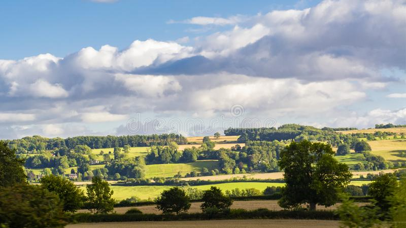British pastoral scenery. In the outskirts of many British towns, the green trees are forested, the green grass is shaded, the cattle and sheep are in groups stock photo