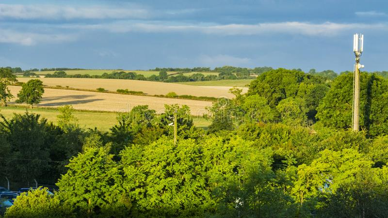 British pastoral scenery. In the outskirts of many British towns, the green trees are forested, the green grass is shaded, the cattle and sheep are in groups stock images