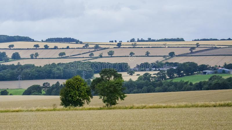 British pastoral scenery stock images