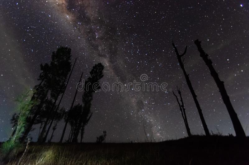 The outstanding beauty and clarity of the Milky way and the starry sky captured from high altitude on the mount bromo, indonesia. stock photos