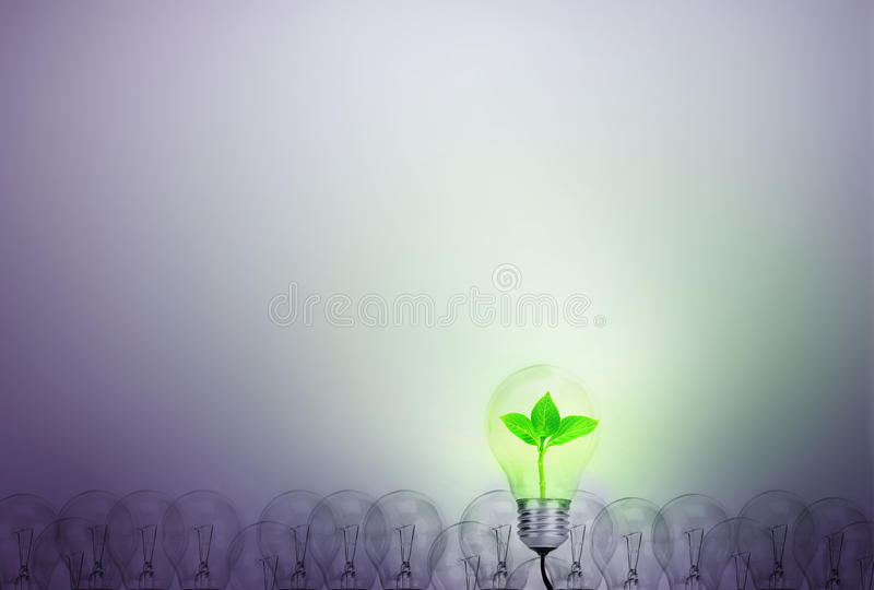 Outstanding creative idea for eco friendly background concept . royalty free stock photo