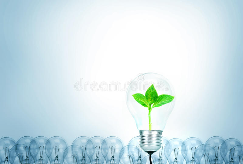 Outstanding creative idea for eco friendly background concept . stock photo
