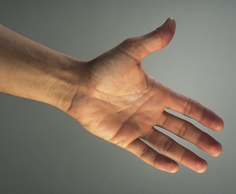 outstretched hand royaltyfri fotografi