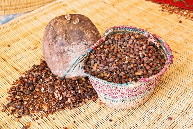 Ouverture des olives d'argan photo libre de droits
