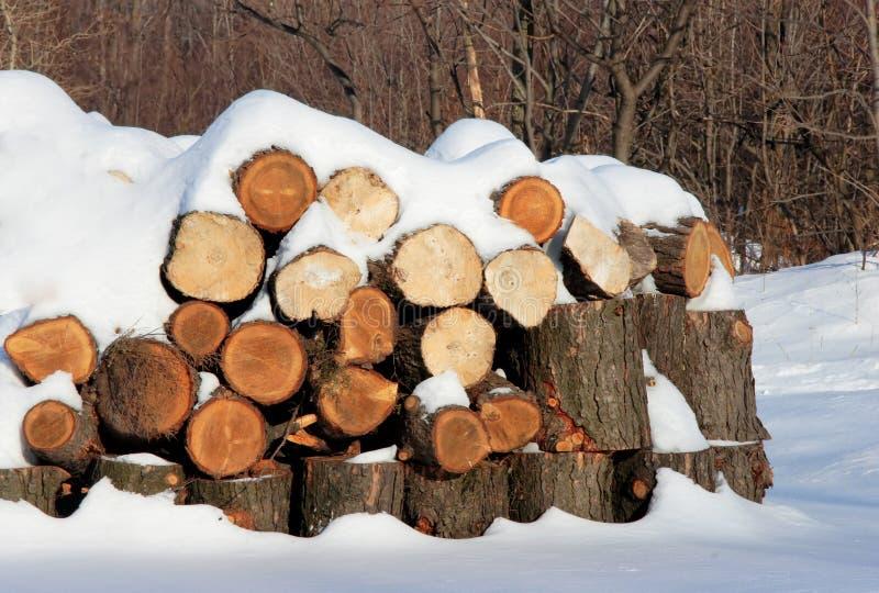 Ouvre une session l'hiver photographie stock libre de droits