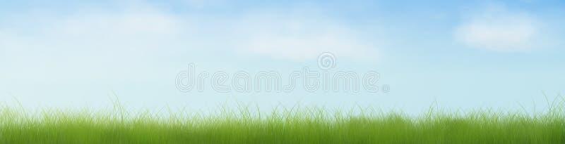 Ouvrez bannière de champ d'herbe la demi photo stock