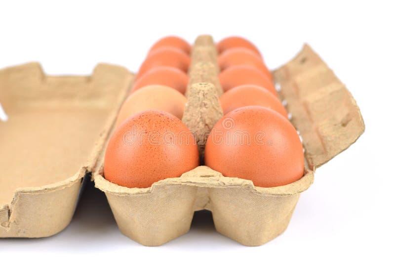 Ouvrez la boîte d'oeufs de poulet photo libre de droits