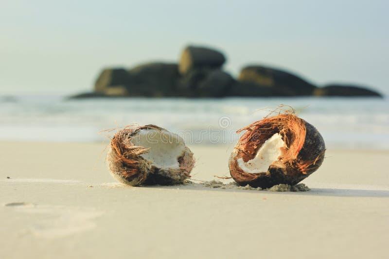 Ouvrez la noix de coco sur le sable blanc en plage photo stock