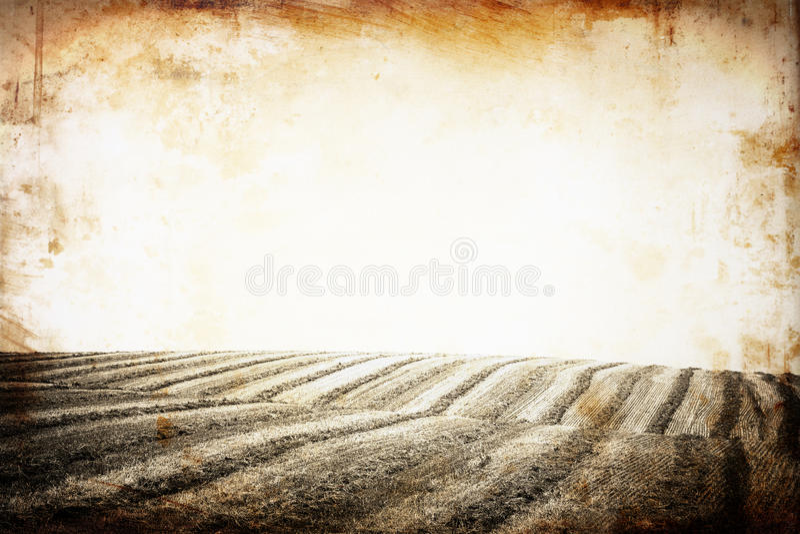 Ouvrez la vue du champ. sépia d'effet de vintage modifiée la tonalité. image stock