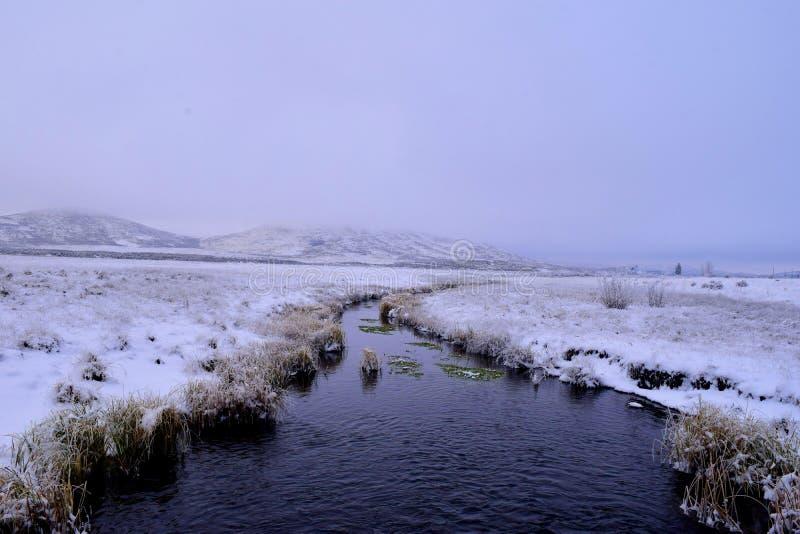 ouvrez le champ en hiver avec le courant photo libre de droits