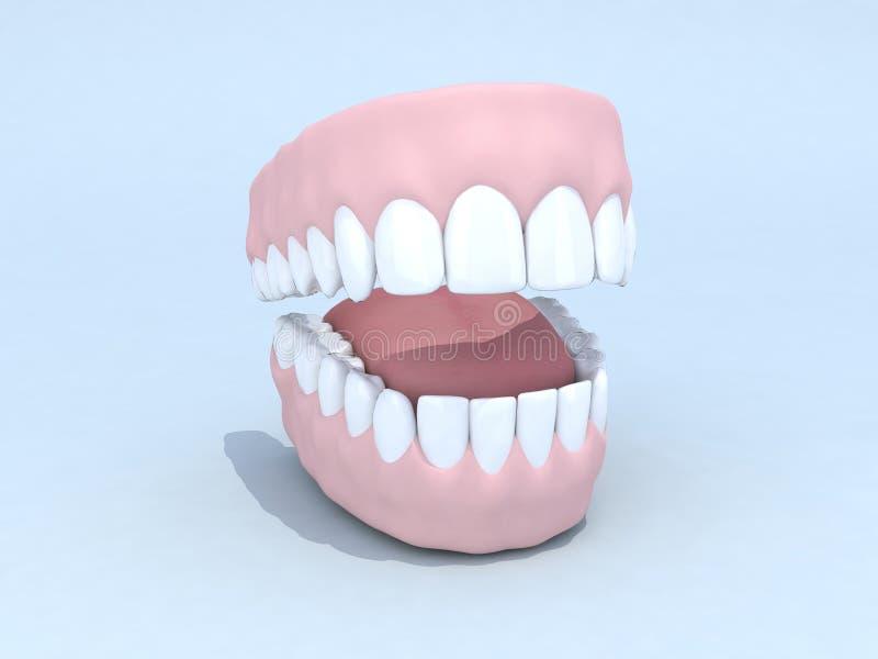 Ouvrez le dentier illustration de vecteur