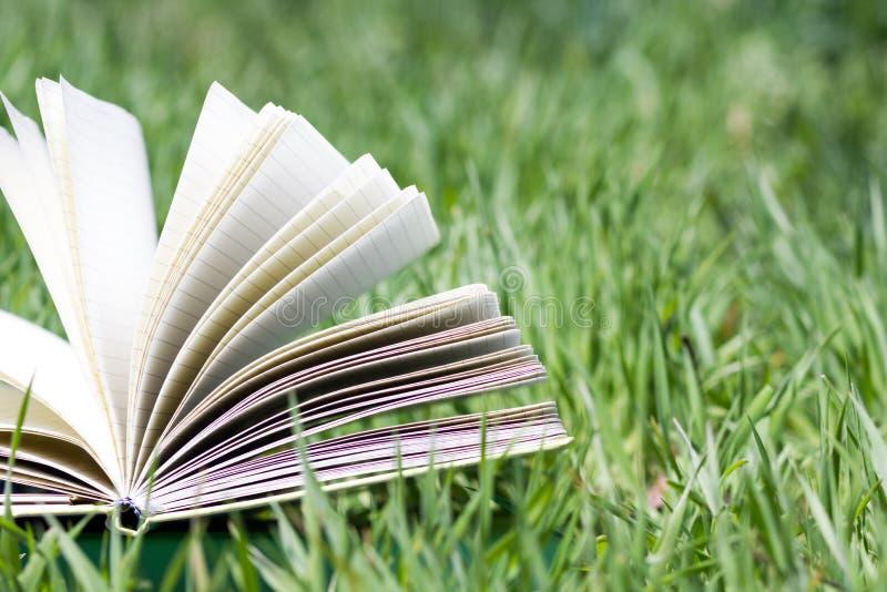 Ouvrez le livre dans l'herbe photo libre de droits