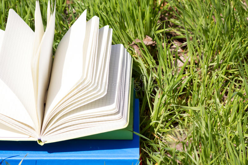 Ouvrez le livre dans l'herbe photo stock