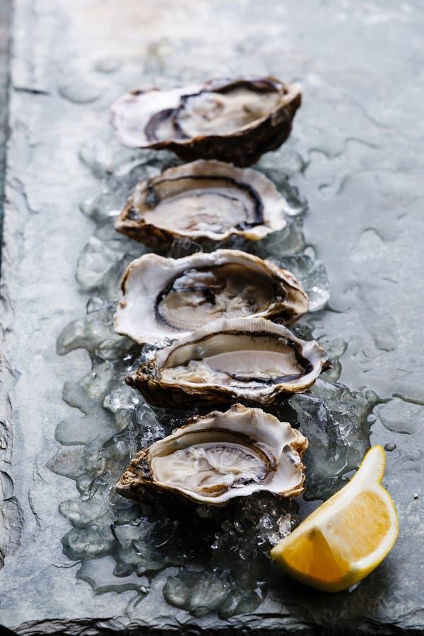 Ouvrez les huîtres avec de la glace et le citron images libres de droits