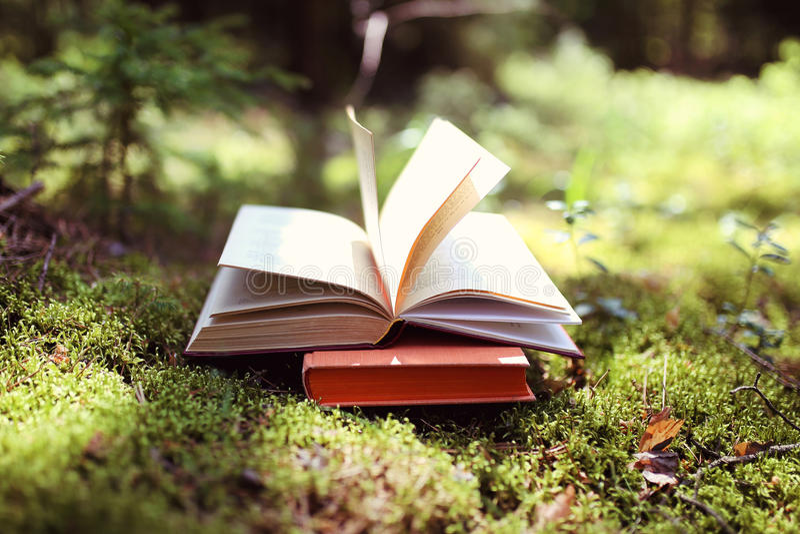 Ouvrez les livres extérieurs La connaissance est pouvoir Réservez dans un livre de forêt sur un tronçon photographie stock libre de droits