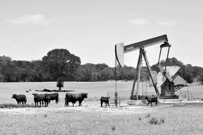 Ouvrier chargé des pompes de puits de pétrole du Texas photos stock