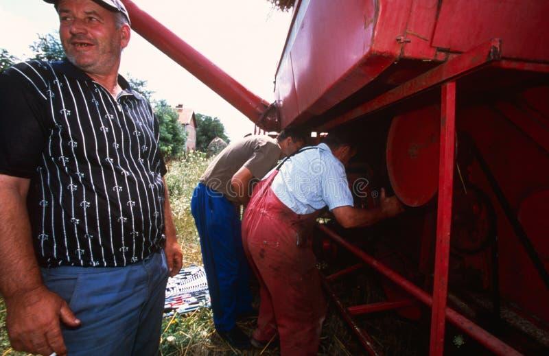 Ouvriers de ferme dans Kosovo. photo stock